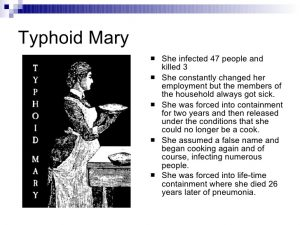 Typhoid Mary graphic